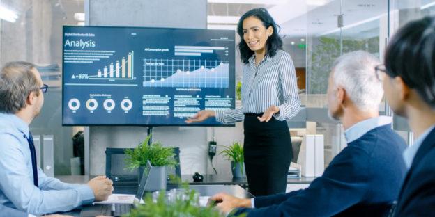 Lean governance Portfolio Management